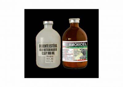 AMOXICEL